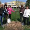 Six nouveaux arbres à l'école secondaire du Mont-Bruno