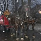 2011-12-14_noelantan.jpg
