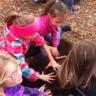 Ateliers de sensibilisation et plantation d'arbustes à l'école de l'amitié