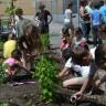 Projet de permaculture à l'école du Parchemin