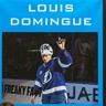 Louis Domingue, une inspiration pour les élèves